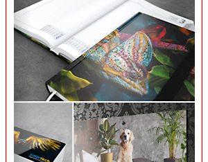 Katalog Werbekalender 2020